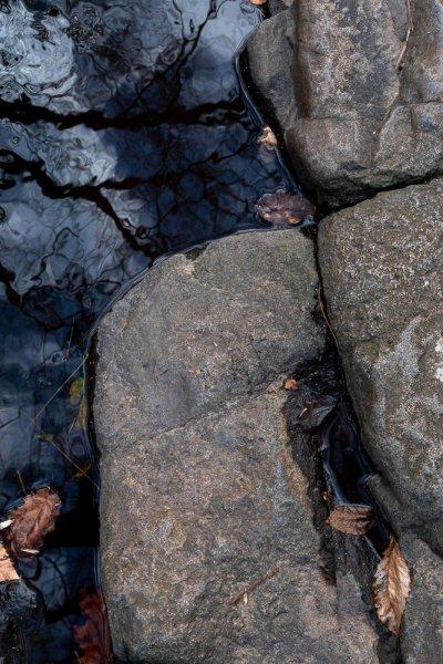 Stones in Brook