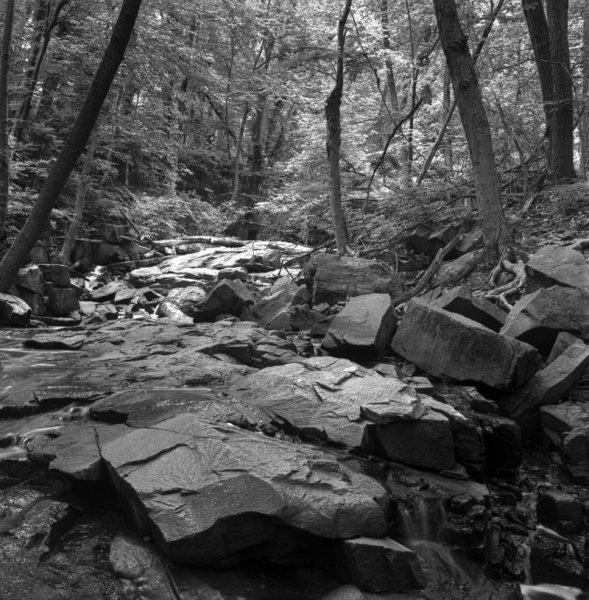 The Upper Brook