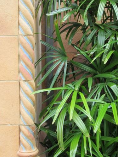 Ringling Palm